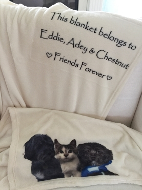 Personalized Custom Throw Blanket for the pet lover, a blanket with your pet's names printed on the blanket with the words